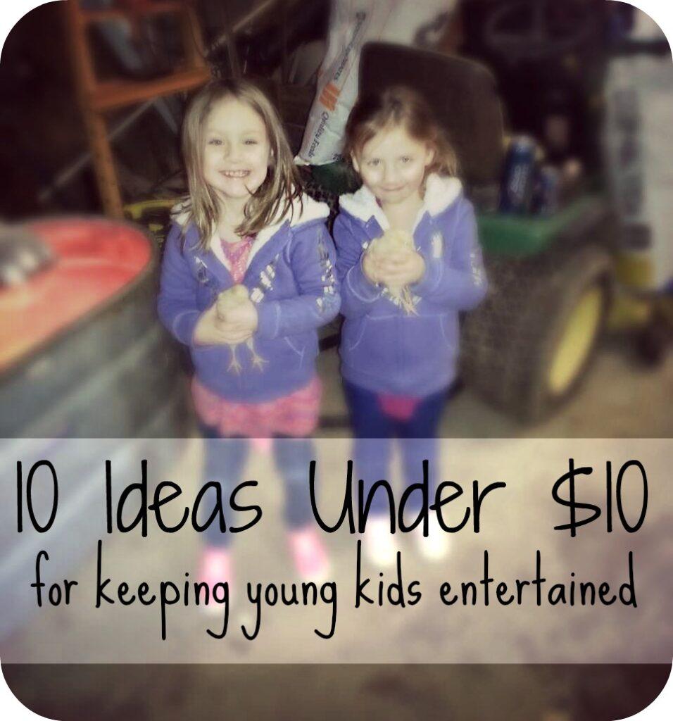 cheap ideas for entertaining young ideas