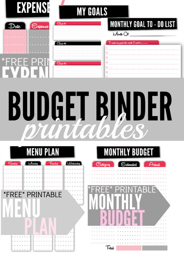 Looking For Some Free Budget Binder Printables These Cute But Functional Financial Worksheets Will Help