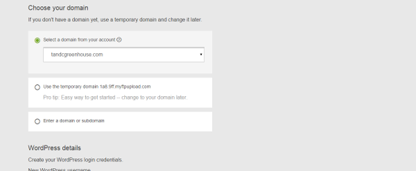 GoDaddy Domain Option