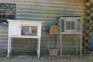 How We've Inexpensively Acquired Animals + Animal Supplies