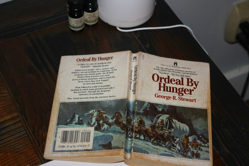 ordeal by hunger The hunger-strike i have described as a dreadful ordeal, but it is a mild  experience compared with the thirst-strike, which is from beginning to end simple  and.