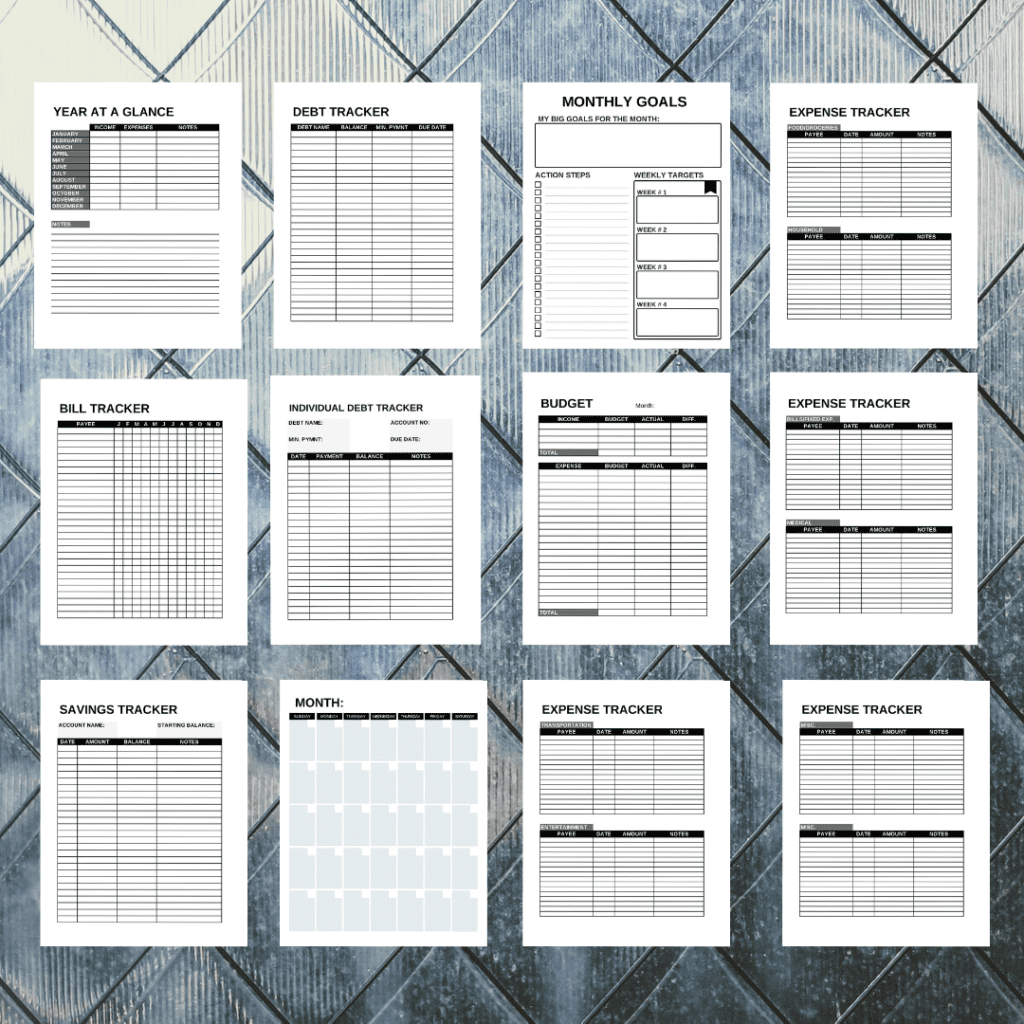 inside look at the pages inside of budge planner