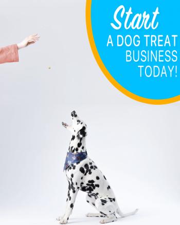 dog-bakery-course